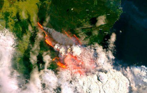 Devastating Fires In Australia