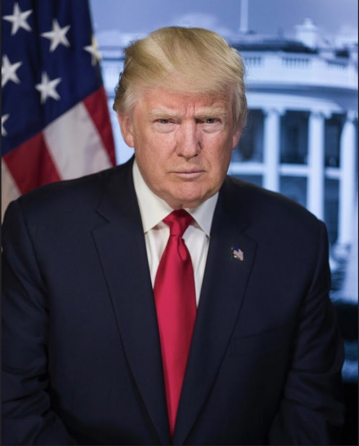 The official portrait of former president Donald J. Trump, 45th president of the United States. Uploaded by Flickr user GPA Photo Archive.